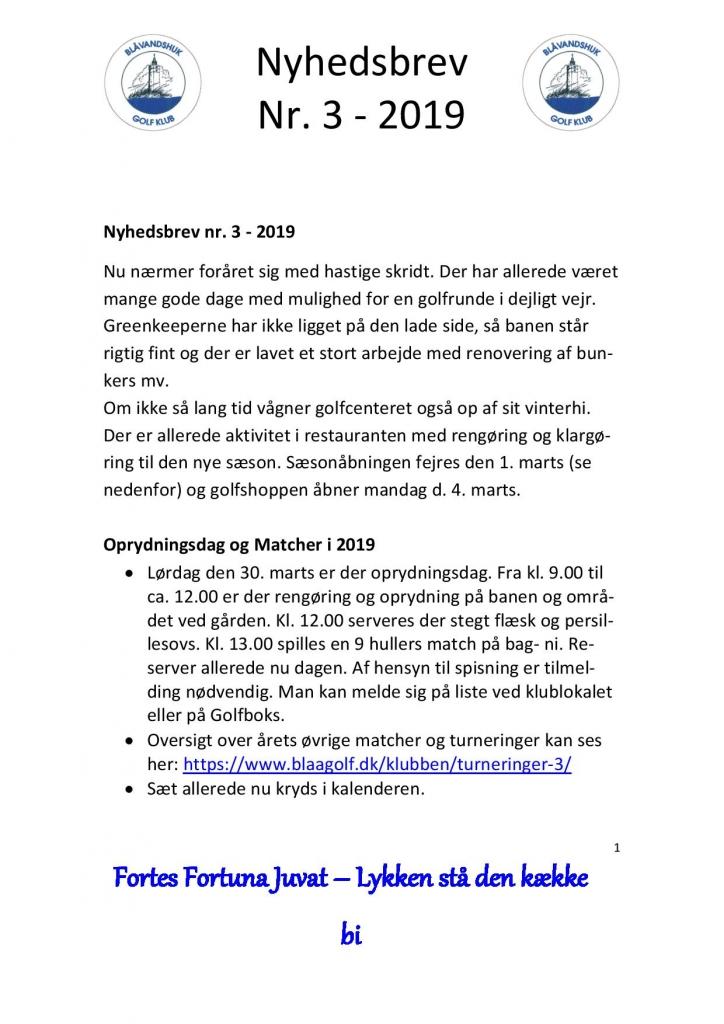 Nyhedsbrev nr 3-2019-page-001